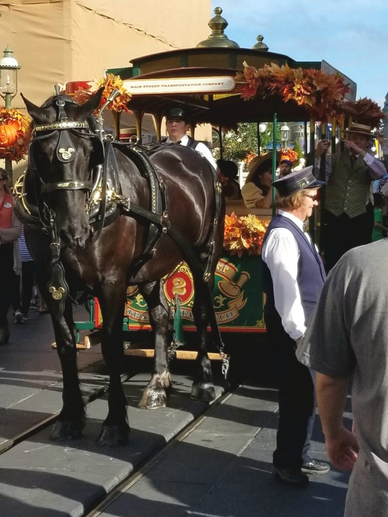 horse-trolley-disney-singer